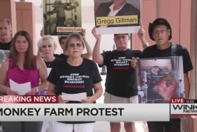 monkey farm protest friday