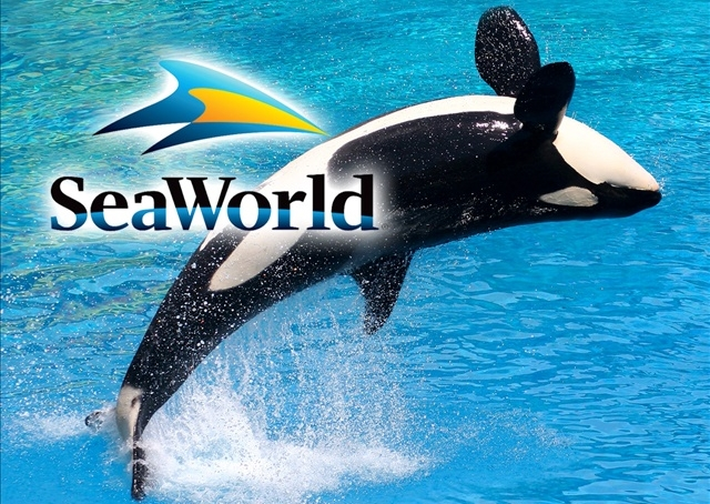 Seaworld Busch Gardens Ticket Prices Increase Wink News